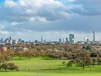View from the top of Primrose Hill Park, 10 mins away!