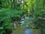 Stunning brook on property and second brook comes to life during rain