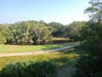 View from one of the three decks. You will see Emma the alligator. egrets fishing and deer