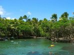 Ahalanui warm pond is a wonderful spot to visit when you are at the east side of the island