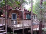 The Treehouse Cabin with private hot tub,built in bar ,screened porch and beautiful forest view