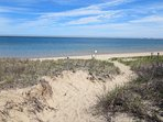 Walk your dog through the dunes- Chatham Cape Cod New England Vacation Rentals