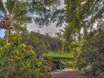 Exterior of Kehena Treetop Bungalow. Welcome!