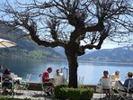 Lunch overlooking Lake Zell-am-see
