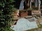 The restaurant/osteria is called 'Uscio & Bottega'