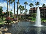 Tropical Gardens With Fountains & Water Features.