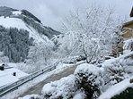 Good snow record