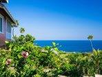 Tropical gardens and sea views