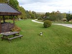 Pets friendly lodges, no extra charge