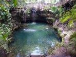 Our private cenote, take a refreshing swim...