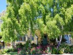 Arcata Stay's Rose Court Cottage studio vacation rental front garden
