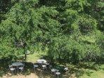 Asseyez vous autour des tables au bord de l'eau protégées du soleil par les arbres fruitiers.