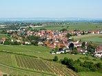 Aussicht auf die Deutsche Weinstrasse und die Rheintalebene