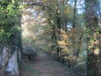Wander down the woodland walks alongside the river at Le Choisel.
