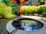 Ridgepoint Hot Tub