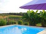 La piscine sécurisée et chauffée avec vu sur les champs.
