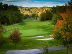 Golf Course,Grassland,Vegetation,Flower,Tree