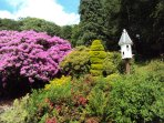 Nutkin Cottage garden with topiary in June.
