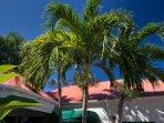 Coral Bay, St. John VI Rental Villa for Couples or Families: West Indian roof view - Astral Ridge