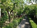 Giardino - Residenza Caserta Sud