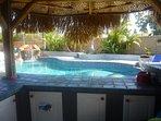 Custom tiki pool bar with fridge, blender, music, and misters!
