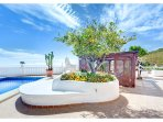 Lemon Tree on spectacular terrace by the private heated swimming pool