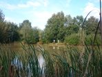 Roulotte de la Grangée, l'étang près des roulottes, l'art de vivre en Touraine