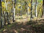 Hiking Trails to Leading to Ridge