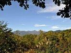View of Bullhead Mountain