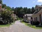 Neighborhood Setting