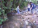 Snir Nature Reserve