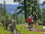 Hike the Tahoe Rim Trail with the Family