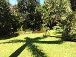 Large park - like garden
