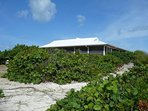 Coconut is perched on a slight rise over the Atlantic Ocean on its one acre of property.