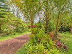 You'll never want to leave this centrally-located piece of Pahoa paradise.