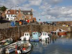 On Crail harbour