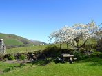 Views of Cadair Idris mountain range from the garden, kitchen and ensuite