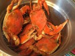 Catch crabs off the dock. Crab pots and traps are provided.