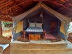 Tent 2 - Queen Bed