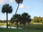 Discover many beautiful golf courses in the area