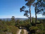 The Balmoral estate (and local area) has lots of lovely walks with amazing scenery to enjoy