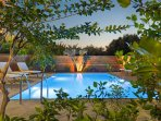 The private swimming pool by night