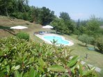 Spacious well maintained garden and pool