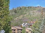 You'll be minutes from numerous Steamboat Springs attractions!