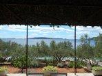 A1 donji(3+2): terrace view