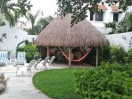 Part of the garden area and the palapa covered patio