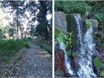 Beautiful Walks & Hidden Waterfalls