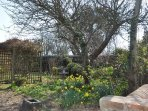 Springtime view from the gate of the private walled garden
