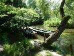 Naturerholungsgebiet Taubergießen kann zu Fuß erreicht werden. Eine Fahrt im Fischerboot gefällig?