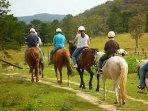 Plenty of horse riding centres and treks